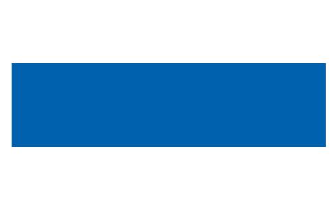 Netvisor_logo